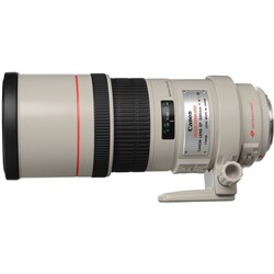 Canon EF 300mm F4L IS USM  002