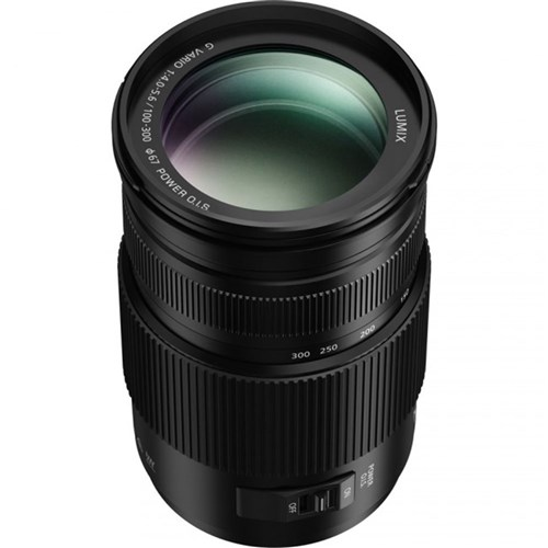 Panasonic Lumix 100-300mm F4-5.6 Micro 4/3 Lens